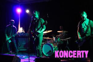 koncerty_wok